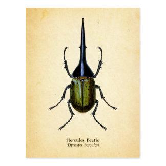 Herkules-Käferpostkarte Postkarte