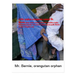 Herr Bernie, Orang-Utan Waisen-OFI Postkarte