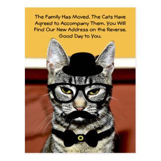 Herr Cat Announces Move mit neuer Adresse Postkarte
