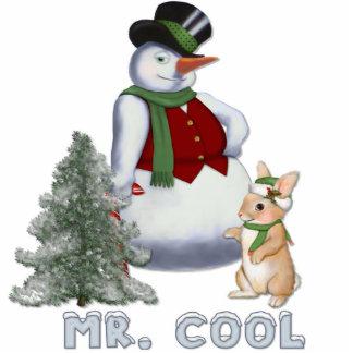 Herr Cool - Snowman-Verzierung Fotoskulptur Ornament