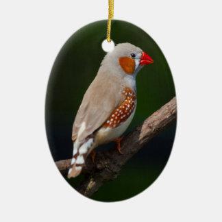 Herr Finch Ornament