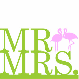 Herr-u Frau-Flamingo 2 Kuchen-Deckel Photostatue