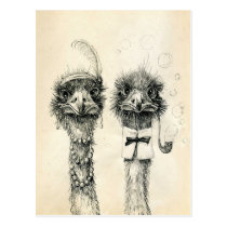 Herr und Frau Ostrich Postkarte