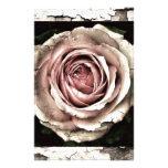 Herrliche Rose Druckpapier