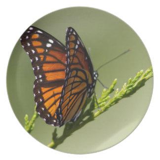 Herrlicher Monarchfalter auf grünem Hintergrund Melaminteller