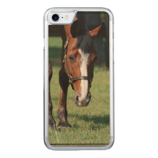 Herrlicher Quarterhorse Carved iPhone 8/7 Hülle