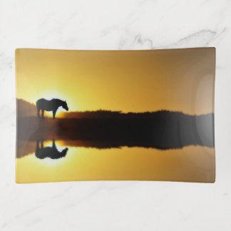 Herrliches Pferd im Sonnenaufgangtrinket-Behälter Dekoschale