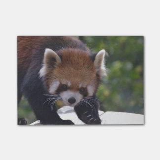 Herumstreichender roter Panda Post-it Klebezettel