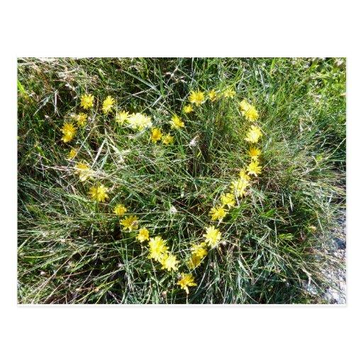 Herz aus Blumen Postkarten