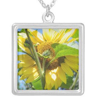 Herz-geformte Sonnenblume Versilberte Kette