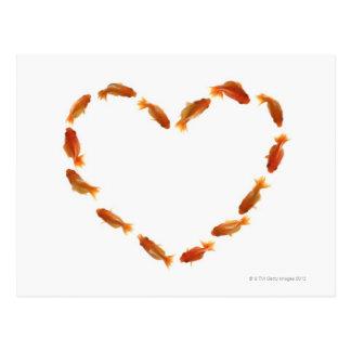 Herz gemacht mit Goldfischen Postkarte