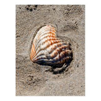 Herz-Muscheln auf dem Strand Postkarte