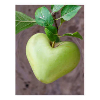 Herzapfel auf Baum Postkarte