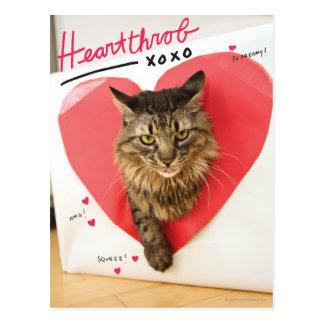 Herzklopfen-Katze Postkarte