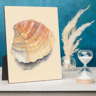 Herzmuschel Seashell, orange und gelb vom Strand Fotoplatte