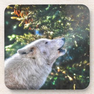 Heulengrauer Wolf-Tier-Foto Untersetzer