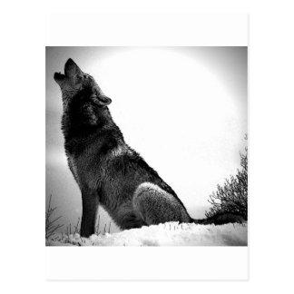 Heulenwolf im Schnee Postkarte