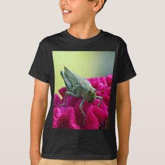 Heuschrecke auf Cockscomb T-Shirt