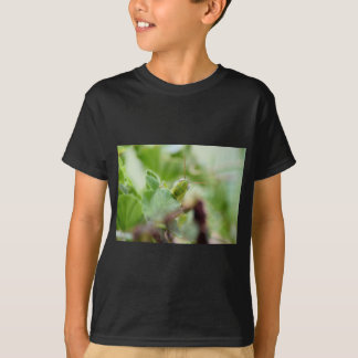 HEUSCHRECKE LÄNDLICHES QUEENSLAND AUSTRALIEN T-Shirt