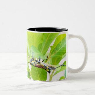 Heuschrecken-Kaffee-Tasse Zweifarbige Tasse