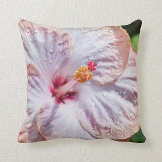 Hibiskus-Blume mit Tau Kissen