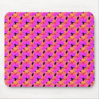 Hibiskus-Blumen-Rosa auf Schwarzem Mousepads