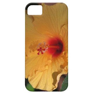 Hibiskus-Blumen-Telefonkasten iPhone 5 Schutzhülle