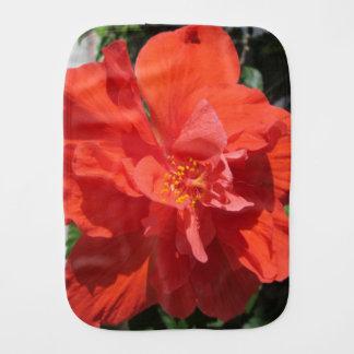 Hibiskus-rote blühende Pflanze Spucktuch