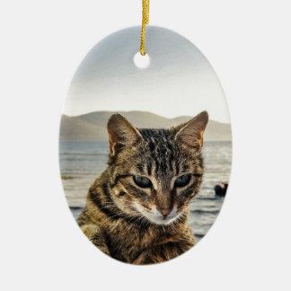 """""""Hier bin ich"""" sage die Katze Keramik Ornament"""