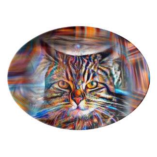 Hilflos Farbin der abstrakten Revolutions-Katze Porzellan Servierplatte
