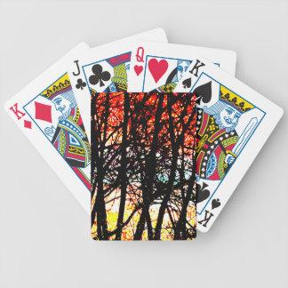 Himmel-Karten Bicycle Spielkarten