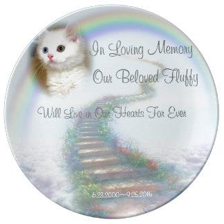 Himmlische Treppenhaus-Katze und Porzellanteller