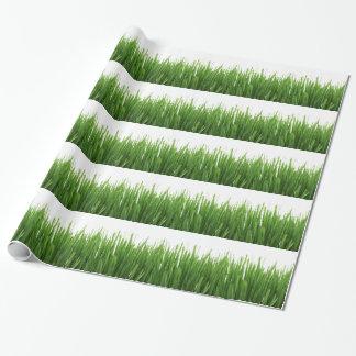Hintergrund des grünen Grases Geschenkpapier