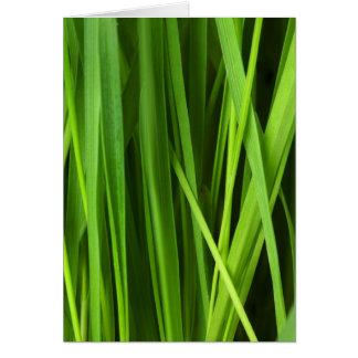 Hintergrund des grünen Grases Karte