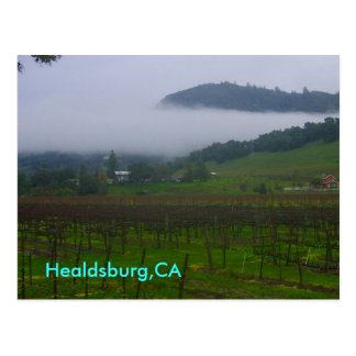 Hinterhof, Healdsburg, CA Postkarte
