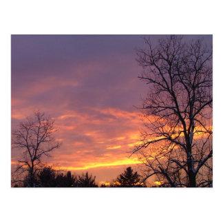 Hinterhof-Sonnenuntergang Postkarte