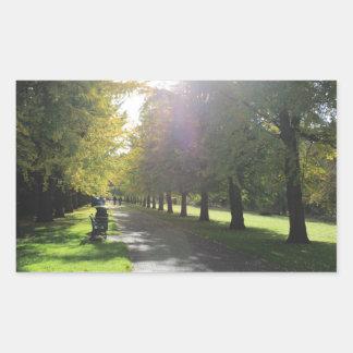 Hinterkanten-Park - Herbst-Bäume Rechteckiger Aufkleber