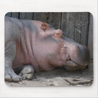 hippo2-4 mauspad