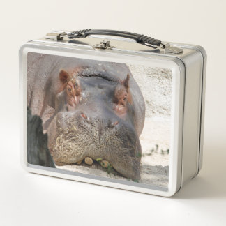 Hippo_20171101_by_JAMFoto Metall Lunch Box