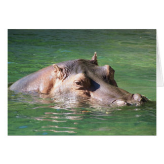 Hippopotamus-Schwimmen auf der Oberfläche Karte