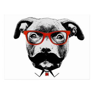 Hipster-Gruben-Stier-Terrier Postkarte