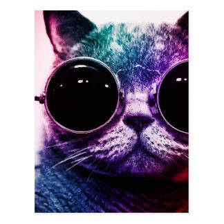 Hipster-Katzen-Pop-Kunst Postkarten