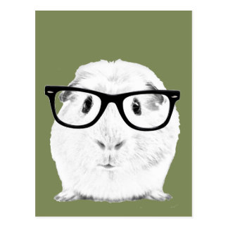 Hipster Pigster Postkarte