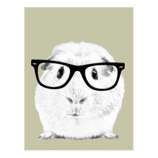 Hipster Pigster Postkarten