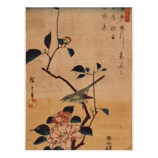 Hiroshige: Kamelie und Bush-Trällerer Postkarte