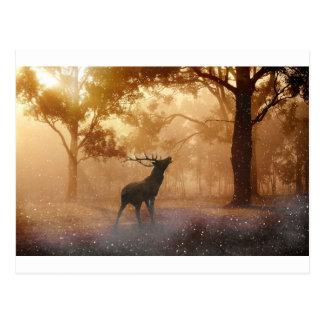Hirsch im mystischen Wald Postkarte