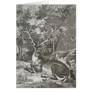 Hirsch im Wald Karte