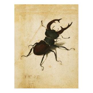 Hirsch-Käfer-Renaissance-Vintage Kunst Albrecht Postkarte