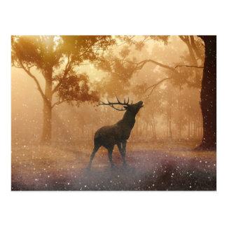 Hirsch schöne Naturlandschaft Postkarte