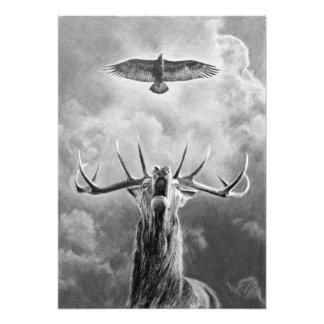 Hirsch und Eagle Fotodruck